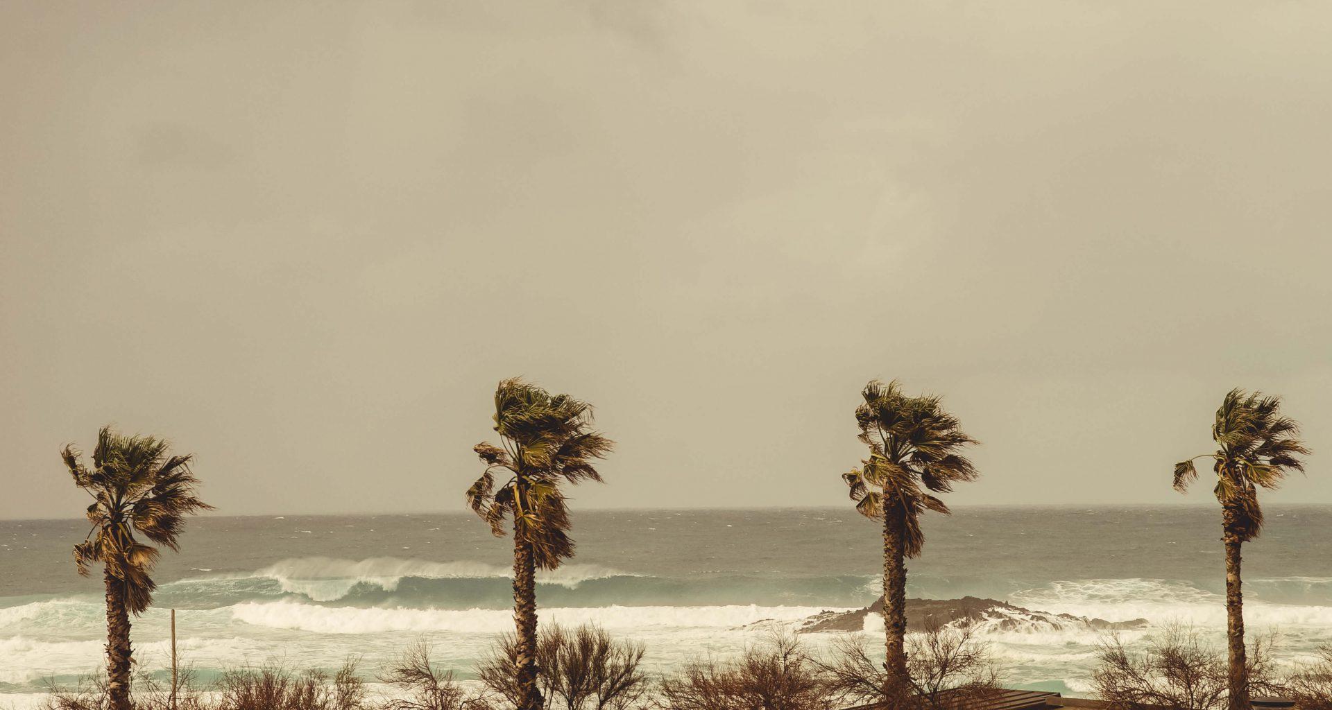 Große Welle mit starkem Offshore