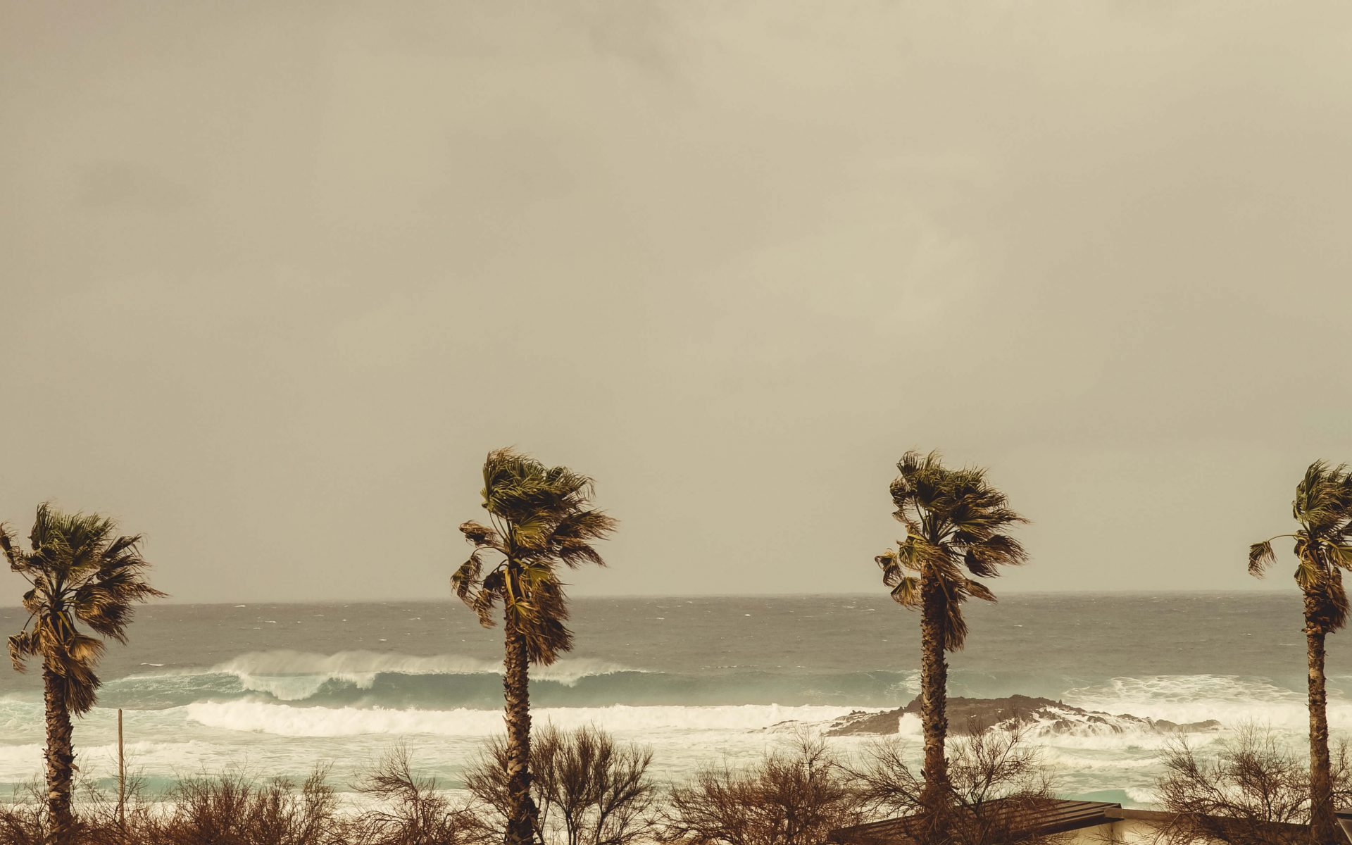 Große, heftige Welle